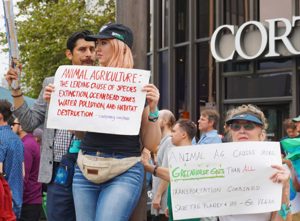 Global Climate Strike March at Consulate-General of Brazil in Beverly Hills, CA (09-27-19)-40