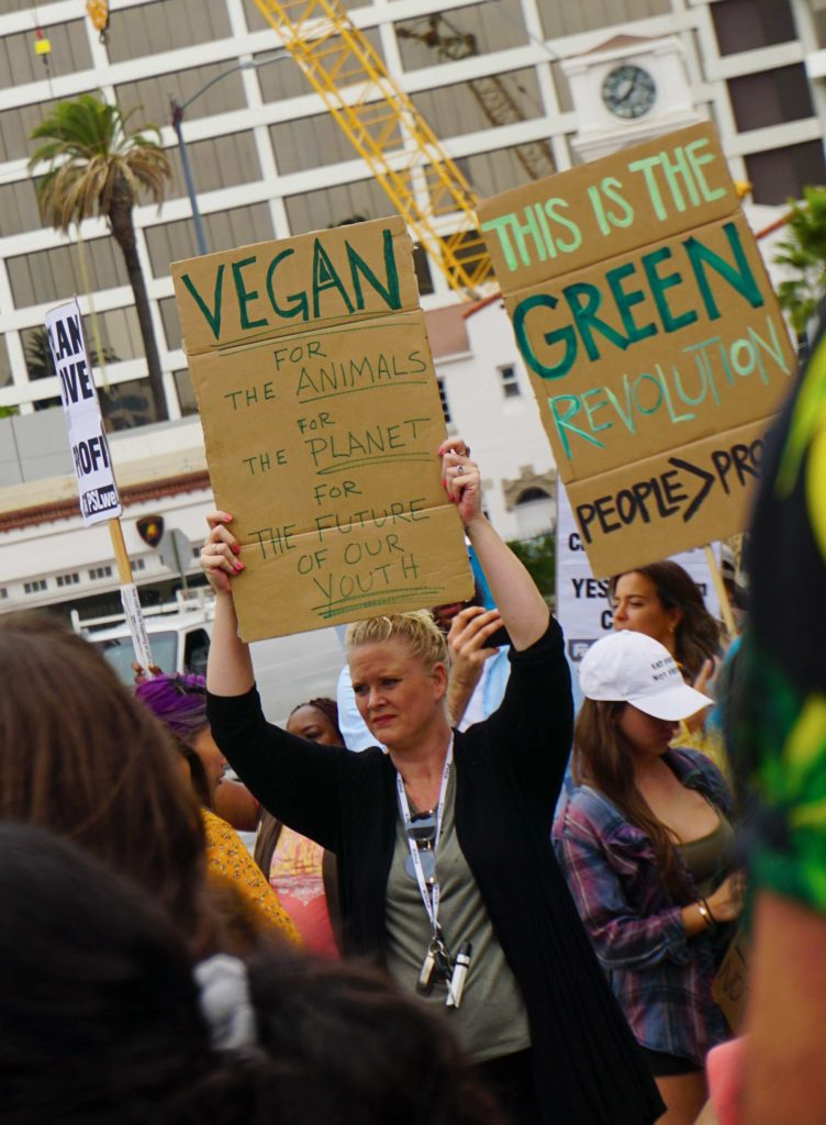 Global Climate Strike March at Consulate-General of Brazil in Beverly Hills, CA (09-27-19)-41