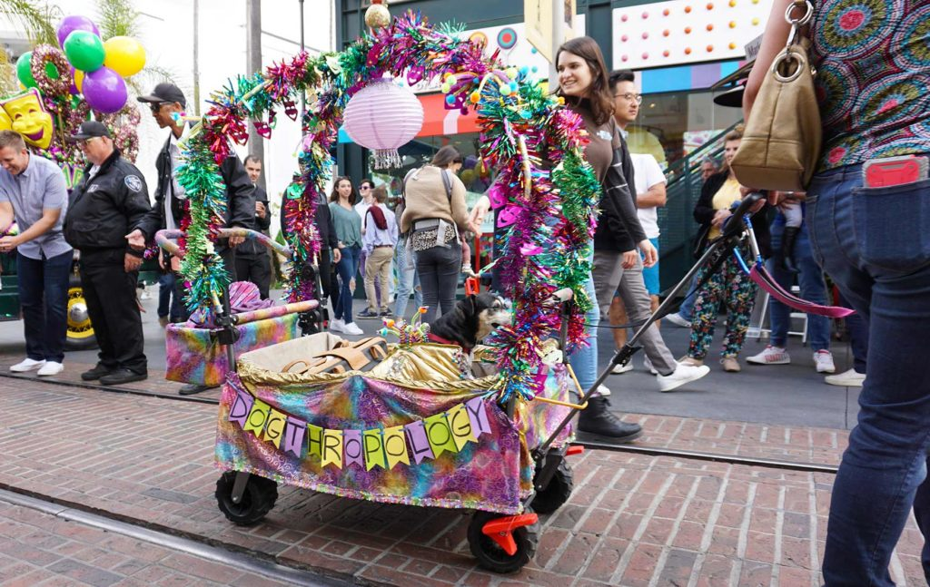 Mutti Gras Parade-Maggie-float, Los Angeles, CA (2/22/20)