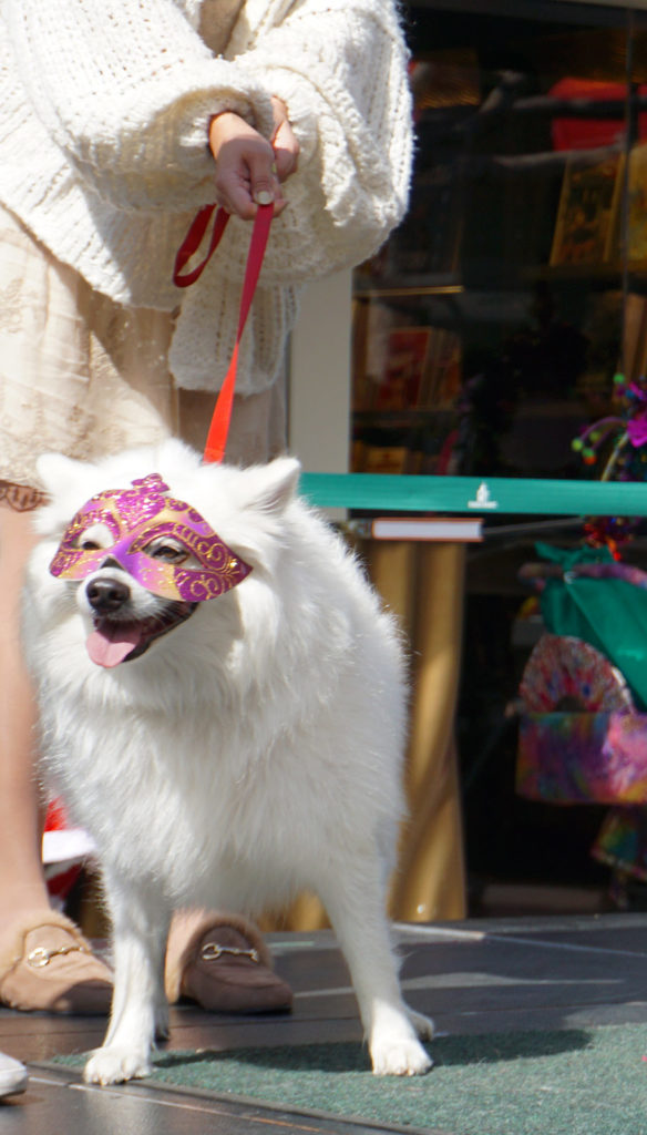 Mutti Gras Parade and Coco, Los Angeles, CA (2/22/20)